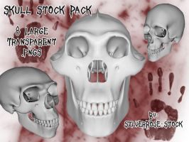 Skull Pack by SilverRose-Stock