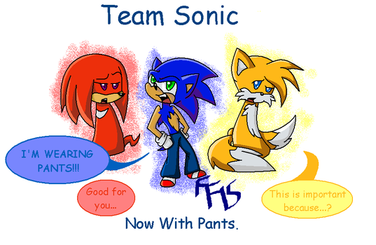Team Sonic: Now With Pants by fennecthefox15
