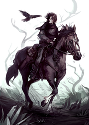 Dude on a horse by znodden