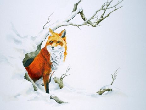The Fox by Atriedes