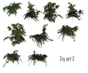 Ivy Set png by mysticmorning