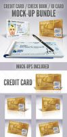 Credit Card / Check Book / ID Mockup Bundle by doghead