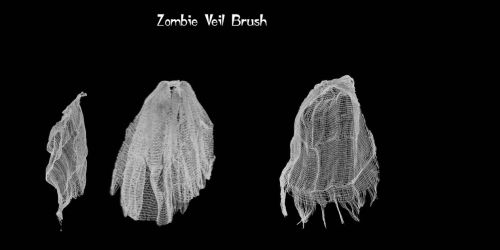 Zombie Veil Brushes by farmerstochter
