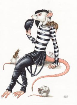 Rat in Black by nelena