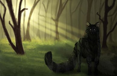 In the forest by mysticwolf218