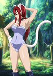 Erza from Fairy tail by TheWalrusclown