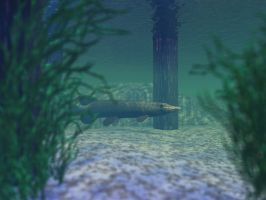 Deeper Under The Dock DOF II by someole3d