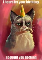 Grumpy cat wishes by Dkundzinsh