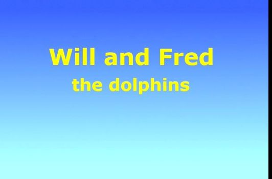 Will and Fred the Dolphins
