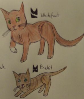 Whitefoot and Pinekit by panthereye24