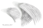 Dual White Wings - LARGE PSD