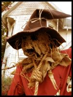 Scarecrow Scarecrow by Evergreen-Willow