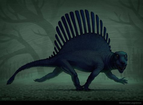 New Dimetrodon ? by AntoninJury