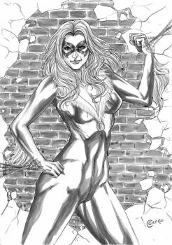 A4 black cat by gregohq