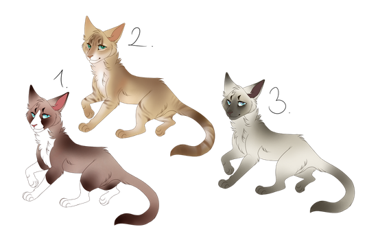 Open cat adopts 1left! by eszter0211
