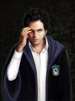 Ravenclaw-bruce banner by innocence777