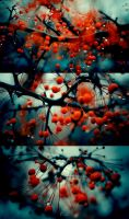 Colours by Eredel