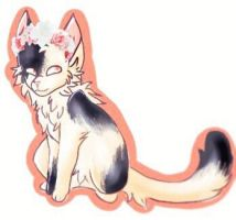 Kitter by CatEyes-To-CatTails