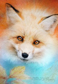 Fluffy fox by Michelle-Winer