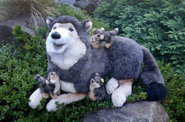 Douglas Lohan Wolf with Pups by LilMissAleu