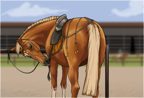 New tack from Russia by Kartoffelpueh