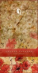 Package - Vintage Grunge - 2 by resurgere