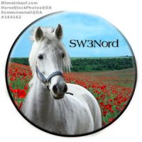 SW3Nord Avatar by CloverHoofAcres