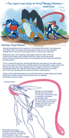 Greninja, Swampert and Toxicroak report and study