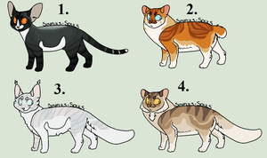 [Closed] Cat Adoptables by Sukida-Adopts