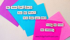 The Daily Magnet #259 by FridgePoetProject