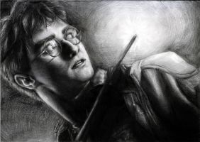 Harry Potter by GabrielleGrotte