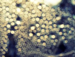 Bokeh by Zwoing