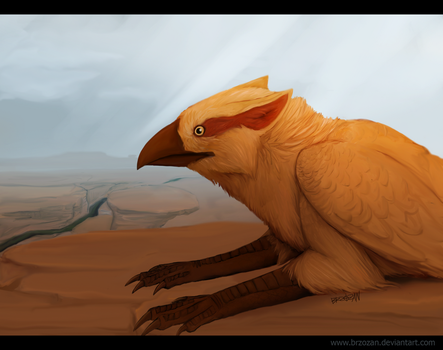 The Desert Gryphon by Brzozan