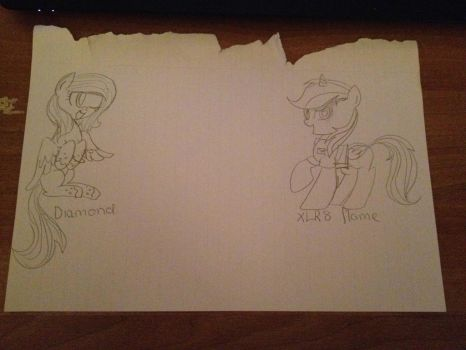 Mine and my cousins OC by FoxFlameBlade125