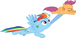 Flying Practise by Budgeriboo