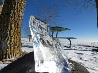 a beautiful pice of ICE by Nipntuck3
