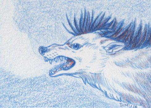 ACEO Snow Drak by Talonzi