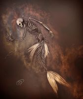 Dead Mermaid Fossil by dannykojima