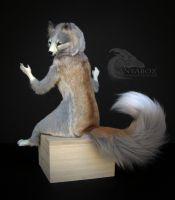 Pale Ash Fox Room Guardian by AnyaBoz