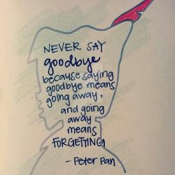 Never Say Goodbye Quote