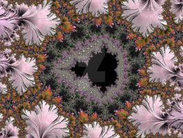 Hidden Mini Mandelbrot by rahulmukerji