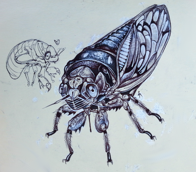 cicada and nymph by Shon2