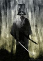 Samurai ghost by dSoto-Studio