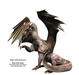 Awesome FREE Dragon Stock png by madetobeunique