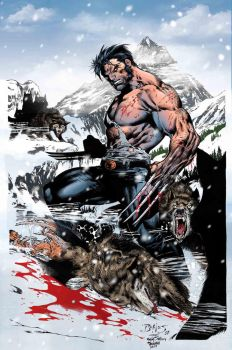 Wolverine_Colorart. by Troianocomics