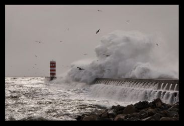 Sea Rage by JoseMelim