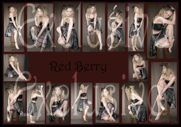 Exclusives Red Berry Fairy by Lisajen-stock