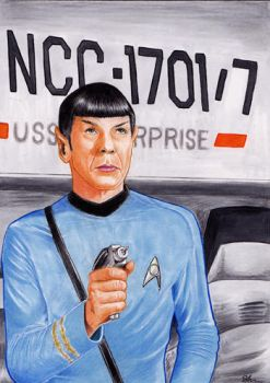 Mr. Spock 02 by twoshirts