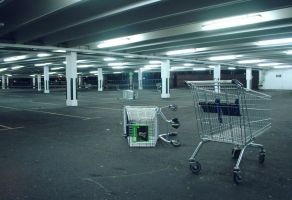 Shopping Carts by chameleonkid