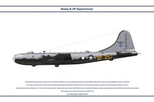 B-29 USA 97th Bomb Group 1 by WS-Clave